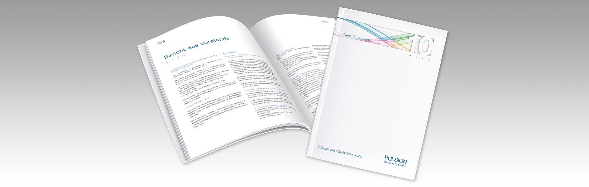 Hier ist der Geschäftsbericht von Pulsion abgebildet.