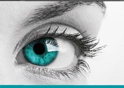 Hier eine großformatige Augenaufnahme aus der Reitberger Optik Imageanzeige abgebildet.