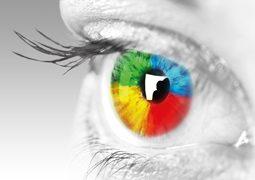 Das neue Keyvisual der HY-LINE Group ist ein vierfarbiges Auge.