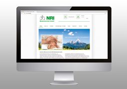 Hier ist der neue NRI Internetauftritt zu sehen.